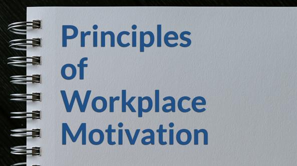 Jami-principles